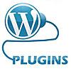 Плагины-Wordpress-TeWeb.ru-100