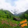 Sound Valley — звуки природы-teweb.ru